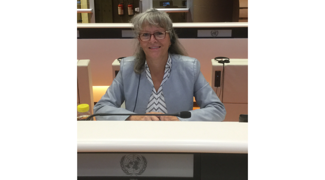 Phyllis Fehr at the United Nations
